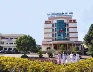 Chỉ tiêu tuyển sinh Đại học Lâm nghiệp 2013