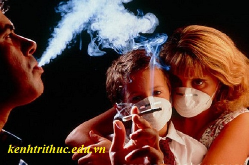 Thói quen xấu hút thuốc lá gây bệnh tim, thoi quen xau hut thuoc la gay benh tim